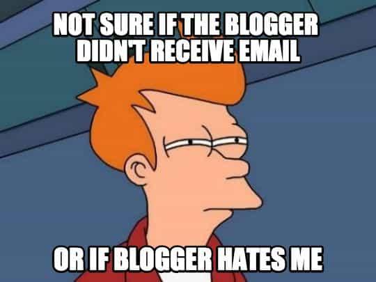 blogger-fry